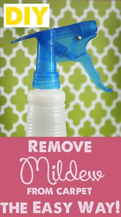 DIY Cleaner for getting mildew out of your carpet!