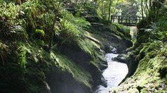 Lydford Gorge | National Trust