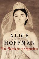 The Marriage of Opposites - Alica Hoffman