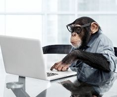 """Analysis Monkey """" the day your boss really thought you were working hard but actually you were on facebook """"!"""