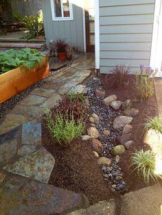 Our DIY Ballard rain garden