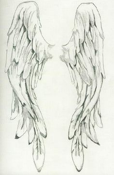Pencil Drawings of angel wings - Bing Images Drawing Sketches, Pencil Drawings, Art Drawings, Drawings Of Angels, Angel Wings Drawing, Angel Wings Painting, Vintage Illustration, Angel Art, Angel Wings Art