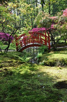 Japanse tuin bij Clingendael
