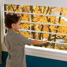 Every window in the upper level should have this. Even if you do not have children, a visiting child to your home is safer. Guardian Angel Window Guard: The Safest Child Window Guard