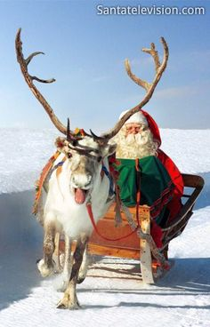 Santa Claus' reindeer ride in Lapland in Finland