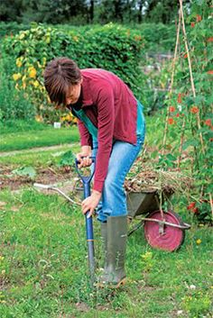 Allotment advice :Clearing the ground , by RHS (Royal Horticultural Society) Allotment Plan, Allotment Gardening, Organic Gardening, Gardening Tips, Veg Patch, Garden Design Plans, Allotments, Grow Your Own Food, My Escape