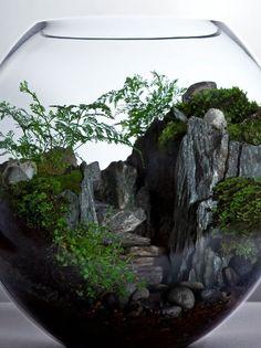 флорариум Горный пейзаж