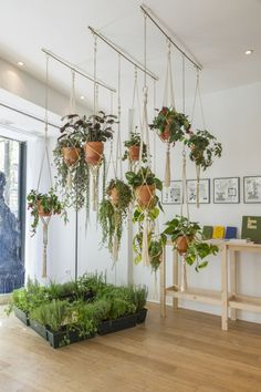 Homemade flower pots – a guide and other DIY ideas - House Plants Vertical Garden Design, Vertical Gardens, Small Gardens, Diy Planters, Hanging Planters, Hanging Gardens, Planter Ideas, Hanging Plant Diy, Hanging Basket Hooks