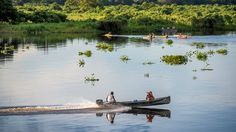 Exploring the Pantanal: Travel Weekly