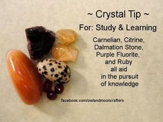 ~ Crystal Tip ~  For study and learning, use Carnelian, Citrine, Dalmation Stone, Purple Fluorite and Ruby. All aid in the pursuit of knowledge.  ~ Owl And Moon Crafters - Healing Crystals