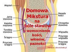 The norovirus is one ugly customer. Arthritis Remedies, Turmeric Tea, Knee Pain, Natural Home Remedies, Detox, Medicine, Health Fitness, Herbs, Amanda