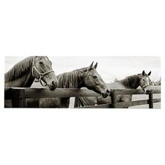 Bring ranch-inspired style to your master suite or living room with this eye-catching canvas giclee print, showcasing a horse motif in greyscale.  Product: Canvas giclee printConstruction Material: Canvas and woodFeatures:  Horse motifMade in the USA