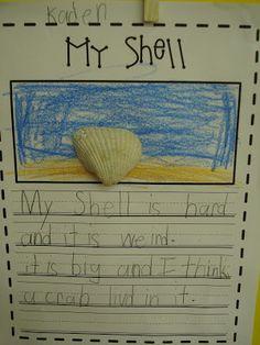 Shells Descriptive Writing - Primary Press