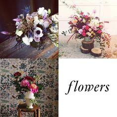 Instagrammers I Love: flowers, food, fido & more!