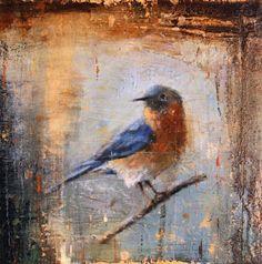 Western Bluebird - Matt Flint