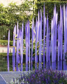 Chihuly at Dallas Arboretum |
