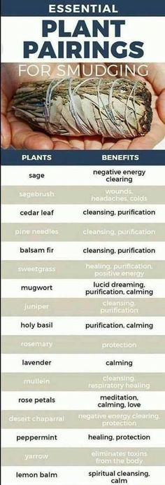 plant pairings for smudging. #sage #smudging