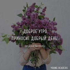 Поддержите нас своим лайком и оцените цитату от 1 до 10👇 ⠀ 🌸Подписывайтесь на наше сообщество в Вконтакте, там мы публикуем много интересного (ссылка в профиле). Спасибо за потрясающее фото@ol_step ⠀ #цитаты #мысли #афоризмы #книги #стихи #поэзия #психология #литература #романтика #любовь #уют #душа #счастье #семья #дети #свадьба