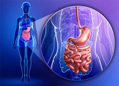 Natural colon cleansing was also employed by the Ancient Greeks as part of their natural health regimen and their tradition. In the United States, colon Colon Cleanse Diet, Natural Colon Cleanse, Snacks For Work, Healthy Work Snacks, Intestines Anatomy, Cleaning Your Colon, Giving Up Alcohol, Troubles Digestifs, Prebiotics And Probiotics
