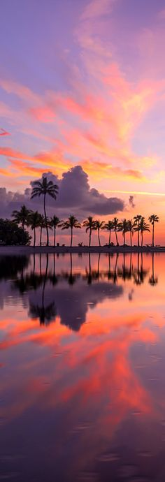 As there are countless number of beaches in the city, we have cut down on your work by compiling a list of some of the best beaches in Miami. Miami Sunset, Best Sunset, Florida Travel, Miami Florida, Beach Color Palettes, Khao Lak Beach, Lamai Beach, Koh Chang, Instagram Beach