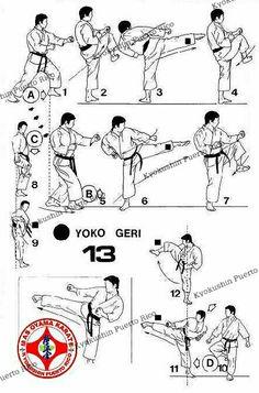 Chinese Martial Arts, Mixed Martial Arts, Aikido, Judo, Tai Chi, Karate Kata, Kyokushin Karate, Martial Arts Quotes, Japanese Quotes