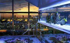 Amazing fish tank living room