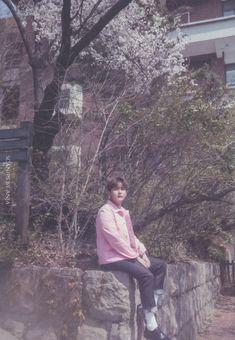 Heechul, Kim Ryeowook, Fandom, Super Junior, When Us, Photo Book, Mini Albums, Waves, Kpop