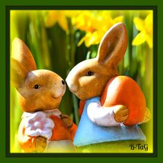 Wacky Habitat #Easter #Bunny Enjoy