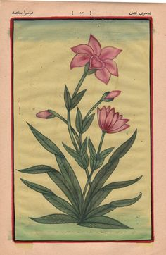 Mughal Flower Miniature Artwork Handmade Old Stamp Paper Indian Floral Painting Floral Decor