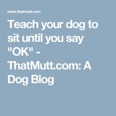 "Teach your dog to sit until you say ""OK"" - ThatMutt.com: A Dog Blog"