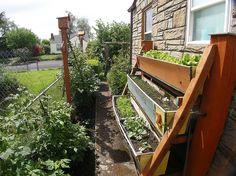 vertical gardening :)