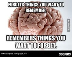 Scumbag Brain on memory. - 300Pics