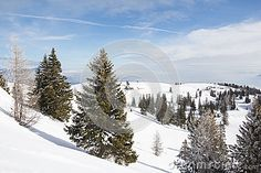#Winter #Landscape At #Mt. #Dobratsch @dreamstime #dreamstime @carinzia #ktr15 #nature #mountains #skiing #hiking #vacation# #holidays #austria #carinthia #stock #photo #portfolio #download #hires #royaltyfree