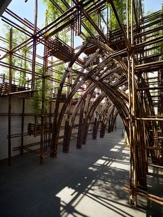 Gallery - Bamboo Forest / Vo Trong Nghia Architects - 3
