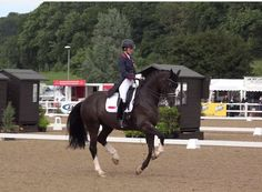 Charlotte Dujardin and Carl Hester cleaning house at Hartpury over the weekend. CLICK for a serious dose of dressage inspiration... http://eventingconnect.today/2016/07/11/dressage-legends-at-work-video-break/