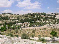 Mont des Oliviers, Jardin de Gethsémané (Israël)