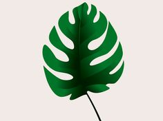 Imagens para Quadros Decorativos - Google Drive Living Room Decor Cozy, Google Drive, Plant Leaves, Wallpaper, Home Decor, Mary Kay, Biscuit, Amanda, Templates