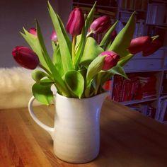 Tulpen im Kännchen.