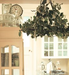 Holly Chandelier for the Holidays