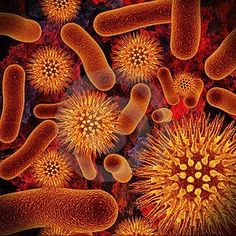 Pharmaceutical Microbiology