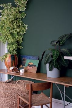 Farrow & Ball Colour by Nature - Natural History Museum - colour trends - dark green wall with mid-century furniture Farrow Ball, Farrow And Ball Paint, Interior Walls, Interior And Exterior, Interior Design, Design Interiors, Free Wallpaper Samples, Tapete Gold, Pallets