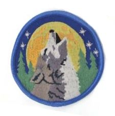 wolf and moon patch from themagicalcat.com