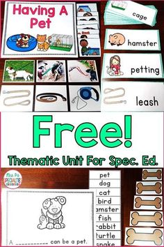 Get a FREE theme unit designed for special education by signing up for Mrs. P's Specialties newsletter. This unit has word wall cards, easy readers, task cards, write the room, count the room, tens frames tasks and more! This unit is perfect for special ed classes, self-contained classrooms, autism programs and more.
