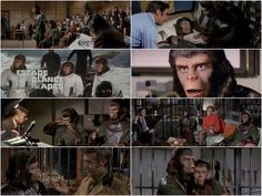 Escape from the planet of the Apes (1972)