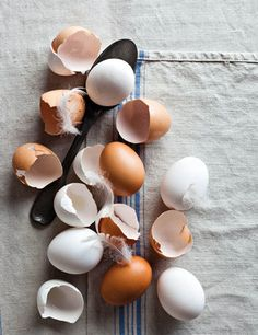 Brown and white eggs with feathers and a spoon on a tea towel