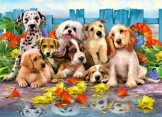 Puppy Dog Collage - Howard Robinson