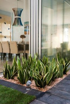Indoor Garden Office and Office Plants Design Ideas For Summer 50 garden Dry Garden, Home And Garden, Garden Modern, Modern Gardens, Contemporary Garden, Succulents Garden, Planting Flowers, Garden Plants, Patio Interior