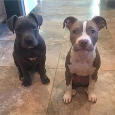 Look at those two sweet faces.