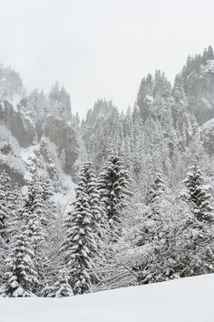 Braunwald im Kanton Glarus Schweiz Snow, Nature, Trips, Outdoor, Viajes, Outdoors, Naturaleza, Nature Illustration, Outdoor Living