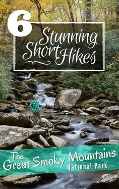 6 Stunning Short Hikes in the Smoky Mountains. Did you know that The Great Smoky Mountains are the most visited national park in the USA? Located near Gatlinburg, Tennessee in the Appalachian Mountains this spectacular national park offers well maintained Great Smoky Mountains, Smoky Mountains Hiking, Smoky Mountains Tennessee, Appalachian Mountains, Smoky Mountain Vacations, Appalachian Trail, Gatlinburg Vacation, Gatlinburg Tennessee, Tennessee Vacation